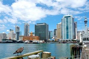 Hyrbil Auckland