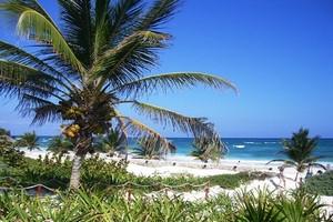 Hyrbil Cancun