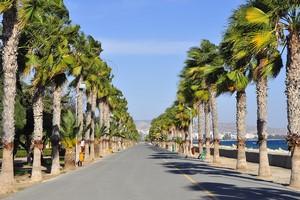 Hyrbil Limassol
